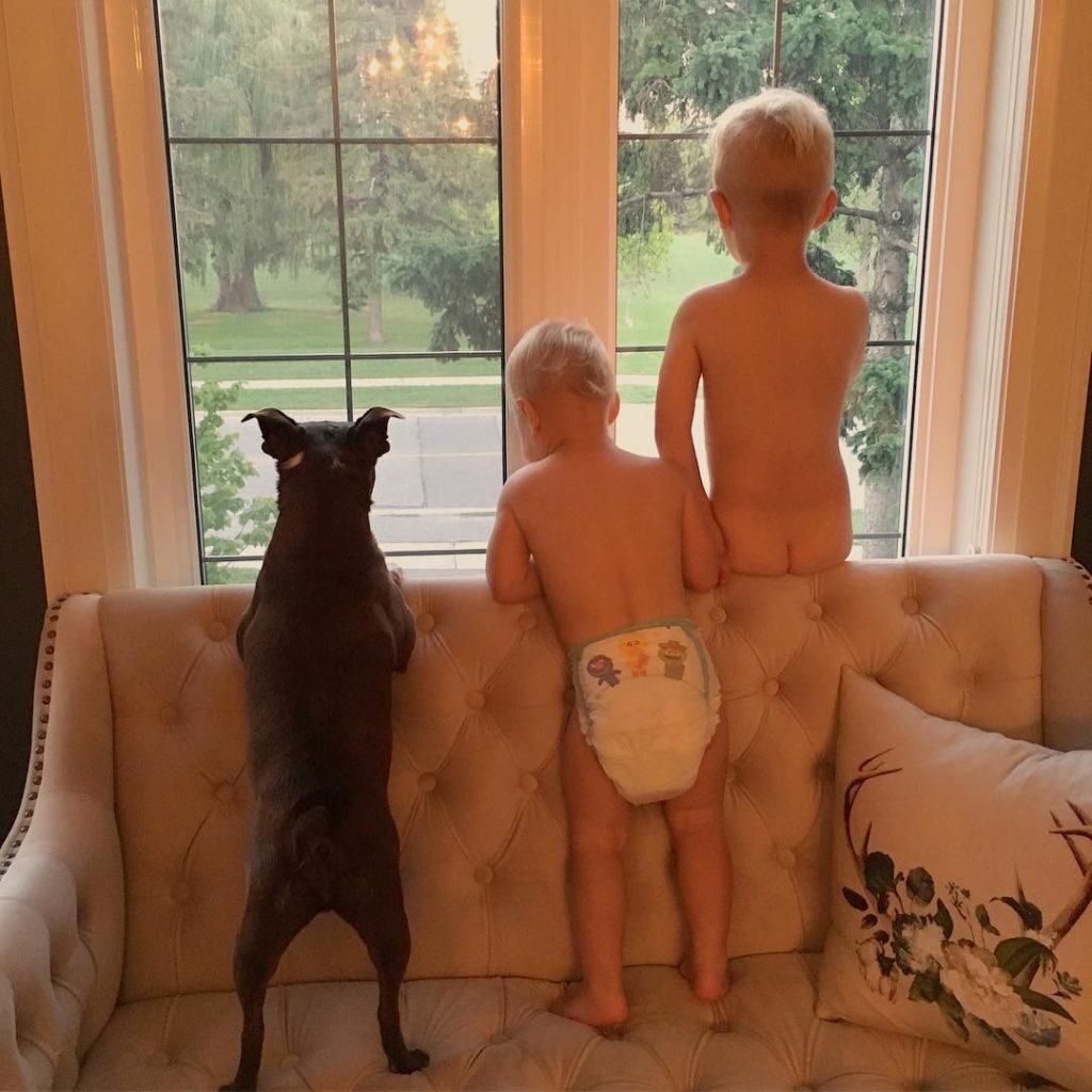 Three little monkeys sitting in the window!! Im sure allhellip